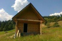Rąstinis namas (61)